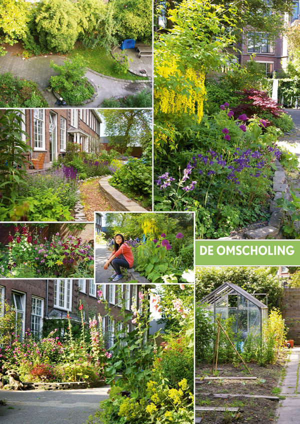 publicatie groei en bloei gemeenschappelijke tuin de omscholing