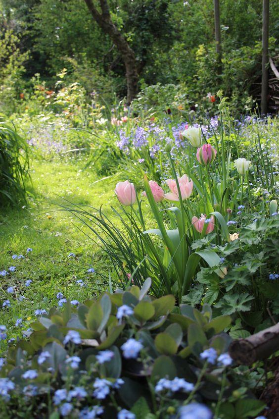 een romantische bloementuin met voorjaarsbollen