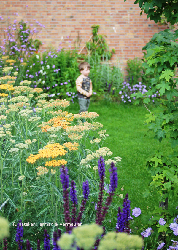 tuinontwerp gezamenlijke tuin