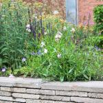 stapelmuurtje zitmuurtje van hergebruikte materialen en zomerbloemen