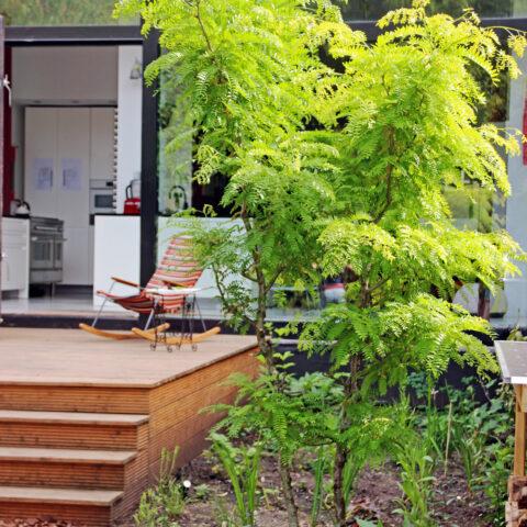 tuinontwerp kleurrijke stadstuin